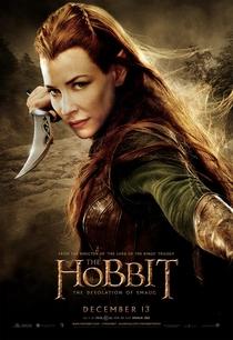 O Hobbit: A Desolação de Smaug - Poster / Capa / Cartaz - Oficial 7