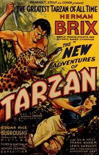 As Novas Aventuras de Tarzan - Poster / Capa / Cartaz - Oficial 1