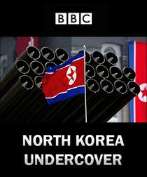 Coréia do Norte Em Sigilo - Poster / Capa / Cartaz - Oficial 1