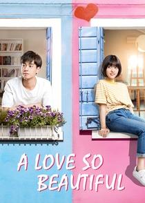 A Love So Beautiful - Poster / Capa / Cartaz - Oficial 5