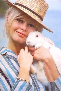 Brigitte Bardot - Poster / Capa / Cartaz - Oficial 3