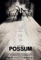 Possum (Possum)