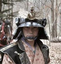 Os Samurais - Poster / Capa / Cartaz - Oficial 1