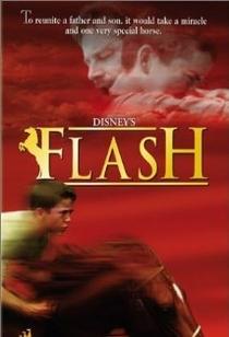 Meu Amigo Flash - Poster / Capa / Cartaz - Oficial 1