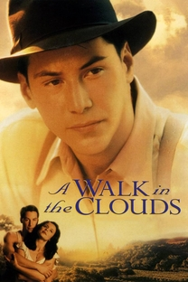 Caminhando nas Nuvens - Poster / Capa / Cartaz - Oficial 5