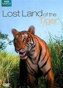 O Tigre Siberiano - Poster / Capa / Cartaz - Oficial 1