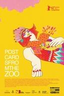 Postcards from the Zoo (Kebun Binatang)
