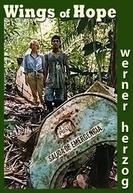 Juliane Cai na Selva (Julianes Sturz in den Dschungel)