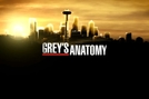 Grey's Anatomy: Seattle Grace On Call (Grey's Anatomy: Seattle Grace On Call)
