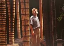 Krajcberg: a Chico Mendes - Poster / Capa / Cartaz - Oficial 1