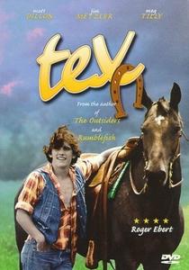Tex: Um Retrato da Juventude - Poster / Capa / Cartaz - Oficial 2