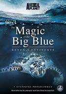 O Encanto do Azul Profundo (Magic of the Big Blue)