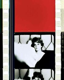Schwechater - Poster / Capa / Cartaz - Oficial 1