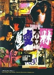 Amores Expressos - Poster / Capa / Cartaz - Oficial 11