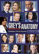 Grey's Anatomy (6ª Temporada)
