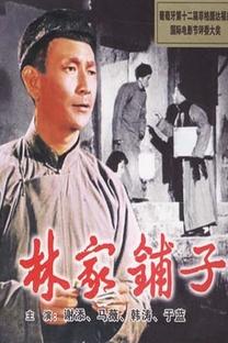 A Loja da Família Lin - Poster / Capa / Cartaz - Oficial 8