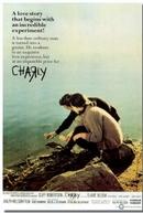 Os Dois Mundos de Charly (Charly)