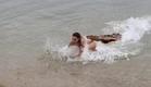 Lake Placid vs Anaconda - Exclusive Trailer