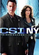 CSI: Nova York (6ª temporada) (CSI: New York (season 6))