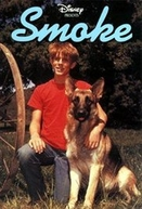 Um Cão de Mil Donos (Smoke)