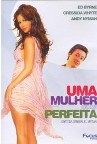 Uma Mulher Quase Perfeita - Poster / Capa / Cartaz - Oficial 1