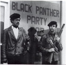 Panteras Negras (Todo Poder para o Povo) (The Black Panthers – All Power To The People)