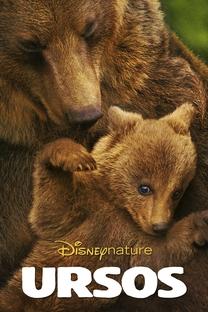 Ursos - Poster / Capa / Cartaz - Oficial 2