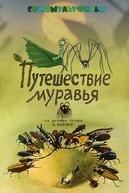 Viagens de uma Formiga (Путешествие муравья)