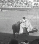 Tourada Espanhola (Spanish bullfight )