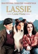 Lassie - A Força do Coração (Lassie Come Home)