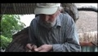 O Grito Krajcberg - Trailer