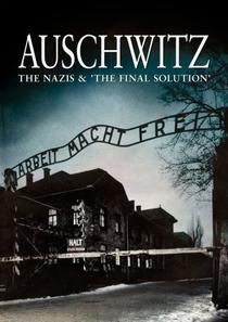 Auschwitz - Poster / Capa / Cartaz - Oficial 2