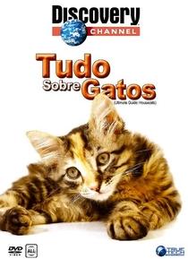Tudo Sobre Gatos  - Poster / Capa / Cartaz - Oficial 1