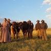 The Ballad of Buster Scruggs | Homenagem dos irmãos Coen ao velho oeste | Zinema