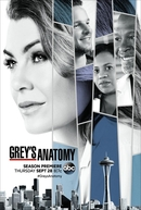 Grey's Anatomy (14ª Temporada) (Grey's Anatomy (Season 14))
