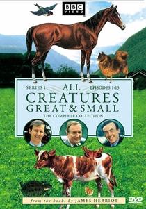 Criaturas Grandes e Pequenas (3ª Temporada) - Poster / Capa / Cartaz - Oficial 1