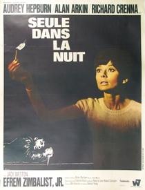 Um Clarão nas Trevas - Poster / Capa / Cartaz - Oficial 7