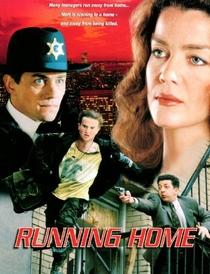 Voltando Para Casa - Poster / Capa / Cartaz - Oficial 1