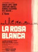 Rosa Blanca (Rosa Blanca)