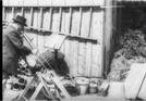 O serrador melómano (Le scieur de bois mélomane (1897))