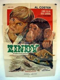 Zindy, el fugitivo de los pantanos - Poster / Capa / Cartaz - Oficial 1