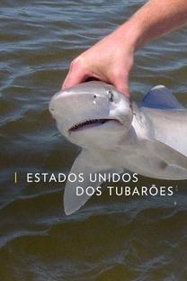Estados Unidos dos Tubarões - Poster / Capa / Cartaz - Oficial 1