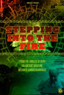 Stepping Into the Fire - Poster / Capa / Cartaz - Oficial 2