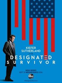 Designated Survivor (1ª Temporada) - Poster / Capa / Cartaz - Oficial 1