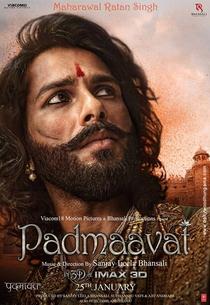 Padmaavat - Poster / Capa / Cartaz - Oficial 13