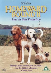 A Incrível Jornada II: Perdidos em São Francisco - Poster / Capa / Cartaz - Oficial 3