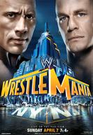 WrestleMania 29 (WrestleMania 29)