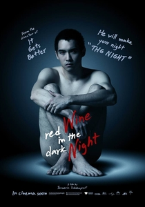 Red Wine in the Dark Night - Poster / Capa / Cartaz - Oficial 2
