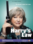 A Lei de Harry (1ª Temporada) (Harry's Law (Season 1))