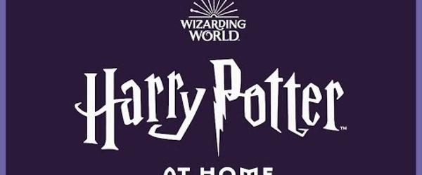 Livro de Harry Potter ganhará leitura integral feita por famosos; ouça